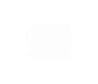 triplei-logo-white